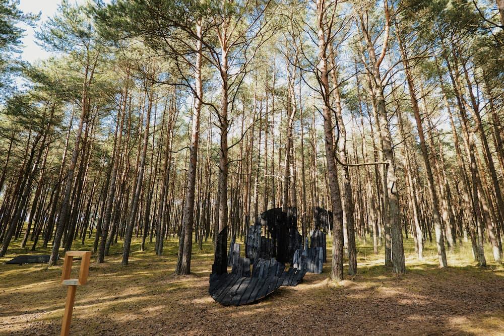 Projektas Anglies miškas Nidoje.