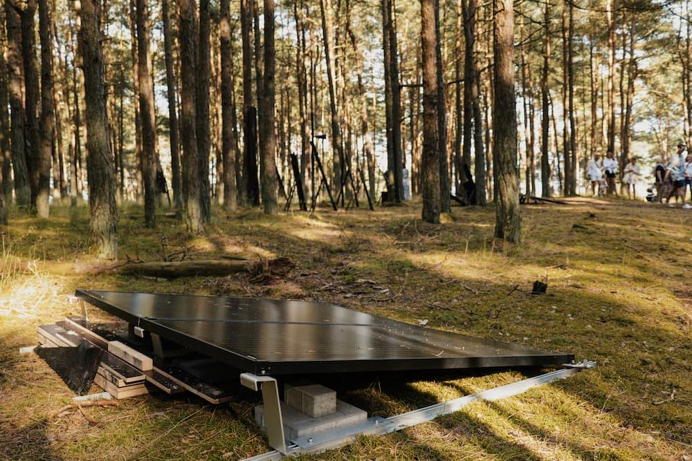 Saulės elektrinė Nidoje. Anglies miškas.